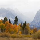 Cascade Canyon, Snow Showers &amp; Fall Color by A.M. Ruttle