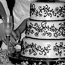 cutting the cake by tego53