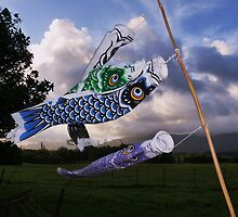 Flying Fish by Barbara Morrison