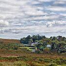 Haytor Vale, Dartmoor, Devon by Squealia