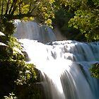 Liffey Falls 2 (Great Western Tiers - Tasmania) by ShutterBuggz