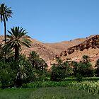 Tenghir valley  by monaiman
