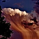 Falls in the Sky by Dana Harvey