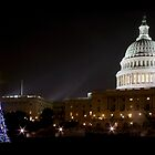 Washington DC - US Capitol Building by bkphoto