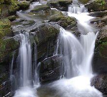 Flowing River by David O'Riordan