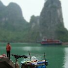 Halong Bay, Vietnam by Gavin Craig