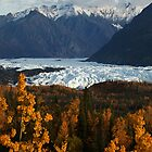 STOCK ~ Fall Surrounds Matanuska Glacier ~ Chugach Mountains  by Rick &amp; Deb Larson