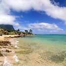 Lord Howe Island Lagoon Panoramic by Martin Levett