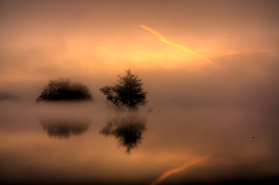 The sun will come by Martin Griffett