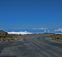 View from Haleakala, Crater -Maui, Hawaii by sandra greenberg