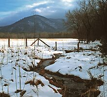 WINTER STORM by Chuck Wickham