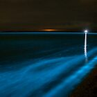 Bioluminescence on the Beach by Phil Hart