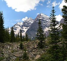 Near Timberline on trail into Maroon Bells Wilderness by Bob Spath