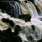Iguassu Falls - close up by Derek  Rogers