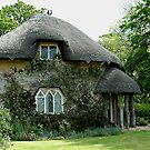 Alice Cottage- Gaunts House - Stanbrige- Dorset by Michael Tapping