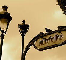 Paris - the metro  by barbara lorenzini