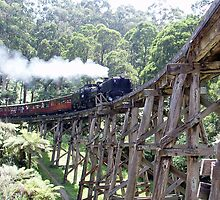 Puffing Billy on Trestle Bridge by UrsulaKing