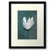solitaire Framed Print