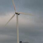 Windswept Millicent 2008 by Jaycee2009