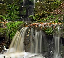 Smithills Waterfall by Steve  Liptrot