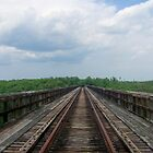 old rails by Shuterbug