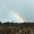 Rainbow Corn by Melody Ricketts