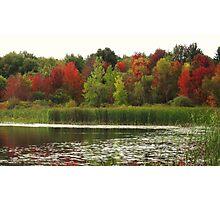 Fall in Michigan Photographic Print