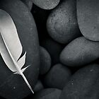Feather and Beach Stones by Sue Hammond