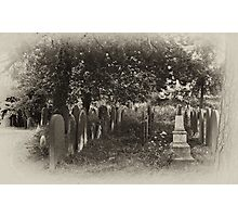 This Garden of Death #1 Photographic Print