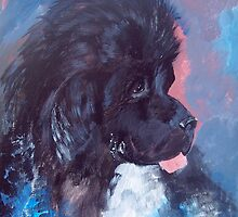 Portrait of Feeny, the Newfoundland Dog by IowaArtist