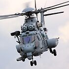 EC-735 Caracal by airwolfhound
