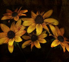 Old gold by Mandy Disher