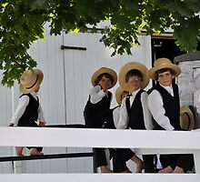 5 Amish Boyz by Monte Morton