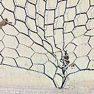 Wire tree by Elizabeth McPhee