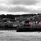 St Ives, Cornwall by Michelle Lovegrove