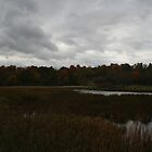 Ominous Sky - Collins Creek Marsh by Allen Lucas