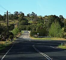Country Road -Picton by Evita