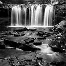 Gently Falling Water by Mark Van Scyoc