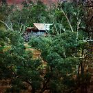 Bush Cottage, Bridgetown, WA by Elaine Teague