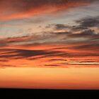 Skies of Orange and Black by Alyce Taylor