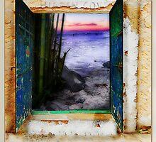 Hidden Cove by Rhonda Strickland