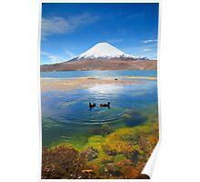 Lake Chungara Poster