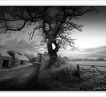 Further up the winter road in B+W by colin campbell