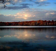 Serenity by Jane Brack