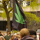 Global Marijuana March by Allan  Erickson