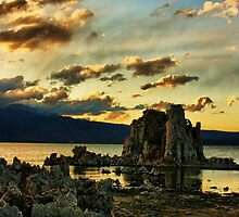 Evening on Mono Lake by Barbara  Brown