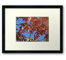 the attic window, where the leaves still dance to their favorite song Framed Print