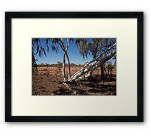 landscapes #173, white on red Framed Print