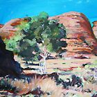Flinders Ranges by AnnieP