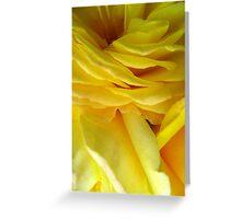 Rose Petal Abstract no.4 Greeting Card